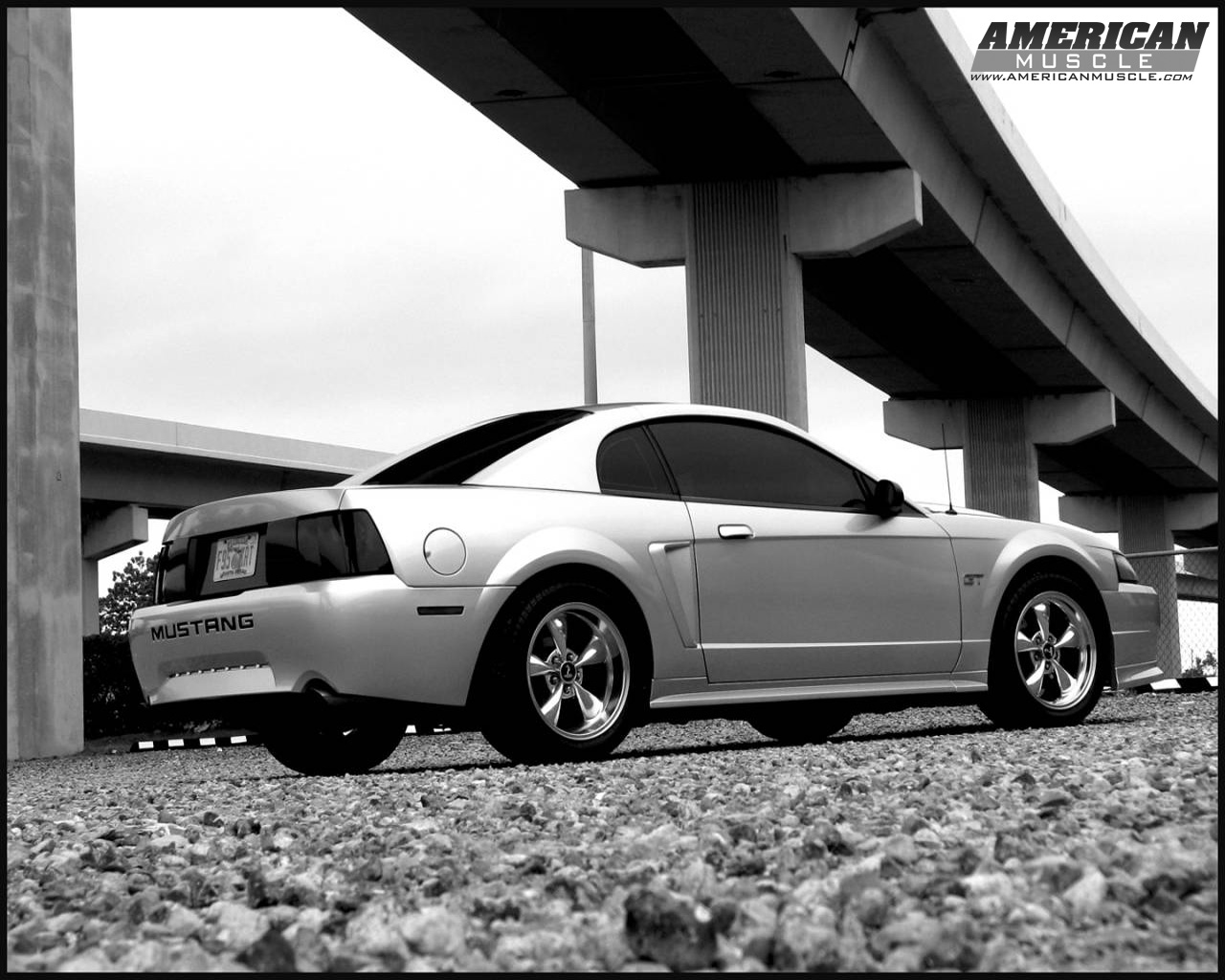 Ford Mustang Wallpapers Amp Mustang Backgrounds