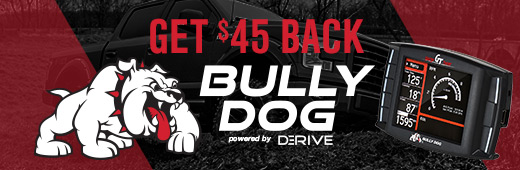 Bully Dog Tax Time Rebate